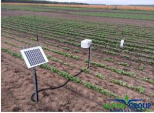 Soil moisture probe and temperature sensor in canola